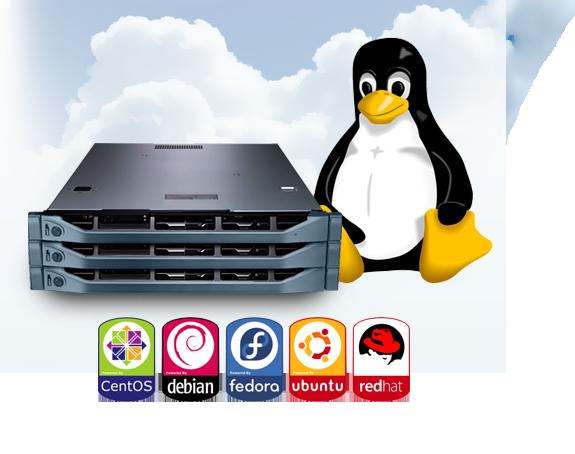 CentOS, Debian, Fedora và Ubuntu là những hệ điều hành Linux thường được sử dụng cho VPS