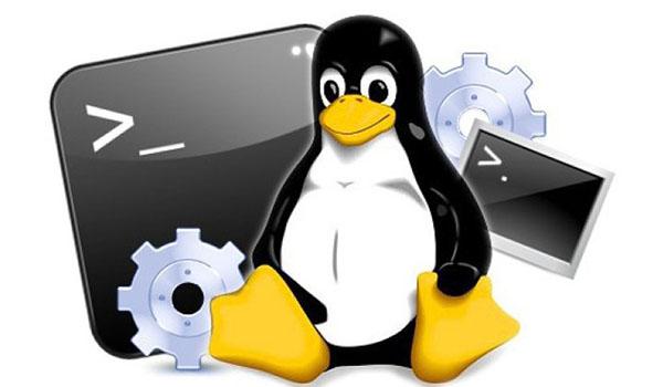 Linux được cả 2 công ty lớn là IBM và Dell sử dụng