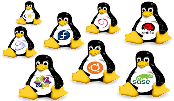 Linux là một hệ điều hành mở với nhiều công dụng bất ngờ