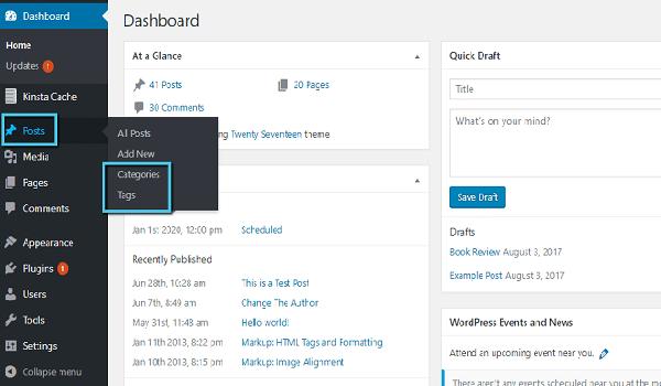 Taxonomy WordPress hỗ trợ xây dựng website cơ bản