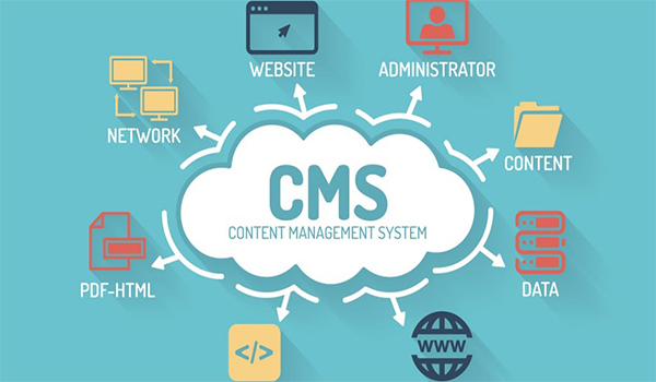 CMS có vai trò quan trọng trong việc điều khiển và vận hành trang web, đồng thời