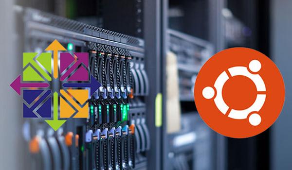 CentOS và Ubuntu đều có những ưu và nhược điểm riêng