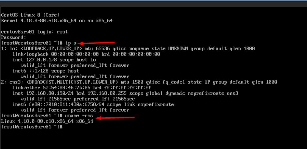 CentOS là gì? Sau khi nhập thành công, kiểm tra IP và kernel của máy CentOS8 bằng các lệnh ip a để biết IP và uname -rms để biết phiên bản kerenl