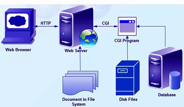 php-fpm là gì? CGI là một phần mềm lập trình đầu tiên trong việc tạo lập trang web động