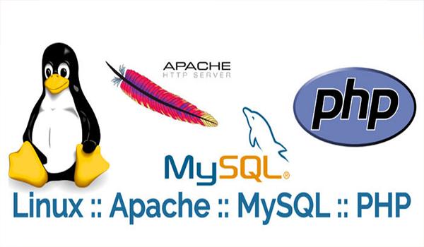 Khi tạo một cơ sở dữ liệu MySQL trên localhost, người dùng cần tuần thủ theo các bước như hướng dẫn