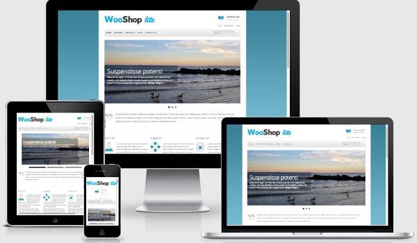 Theme WordPress WooCommerce Nếu bạn đề cao việc trình bày sản phẩm ấn tượng, WooShop Lite là theme không thể bỏ qua