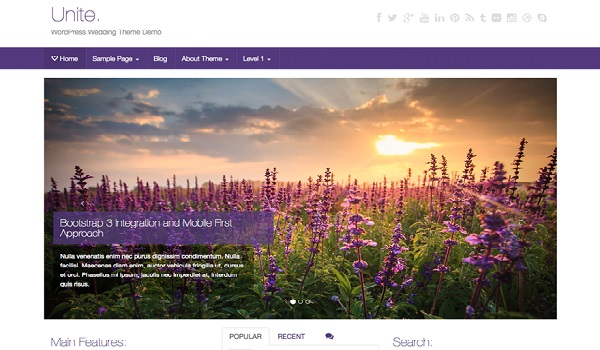 Theme WordPress WooCommerce Unite gây ấn tượng với thiết kế hiện đại, năng động