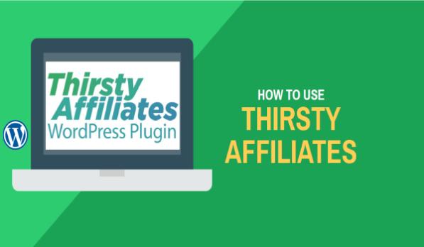 Thirsty Affiliates với chức năng giám sát các liên kết trên website