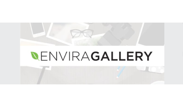 Plugin WordPress miễn phí - Envira Gallery nâng cao thứ hạng SEO của trang web trên bảng tìm kiếm