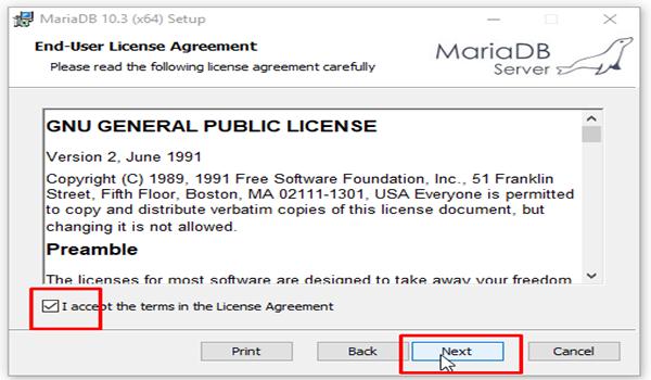 MariaDB là gì? Bước 3: Tích vào ô I accept... và chọn Next