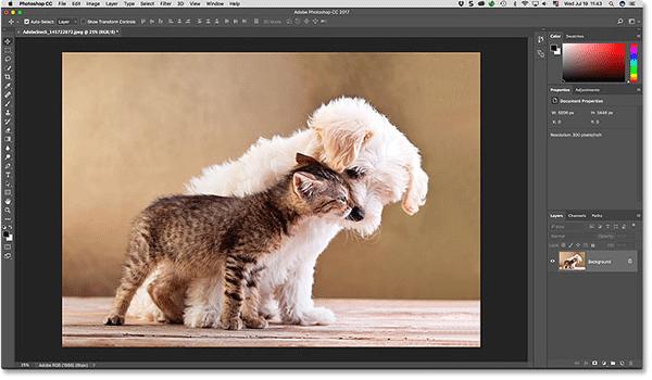 Các công cụ chỉnh sửa ảnh như Photoshop thường có tính năng nén ảnh
