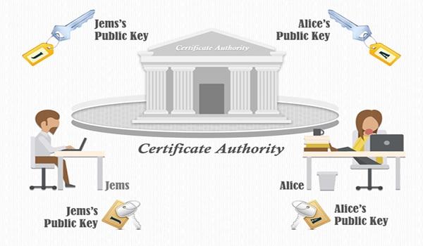 Certificate Authority - CA là gì? Certificate Authority đóng vai trò bên thứ ba cấp chứng chỉ số