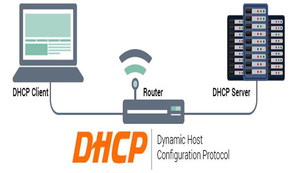 DHCP là gì? đóng vai trò tự động gán địa chỉ IP cho thiết bị trong mạng