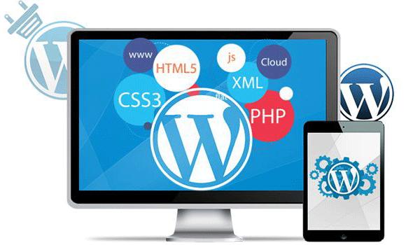 Theme WordPress là gì? Phát triển theme WordPress yêu cầu hiểu biết lập trình căn bản
