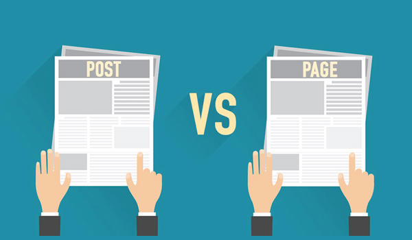 Page WordPress là gì? Cả Post và Page WordPress đều ở dạng Post Type