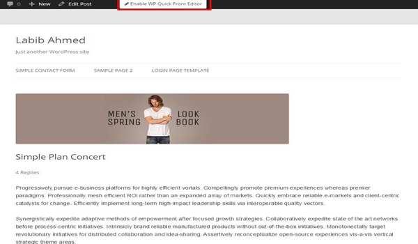 Plugin Editor WordPress - WP Quick Frontend Editor hỗ trợ chỉnh sửa nội dung trực tiếp trên website