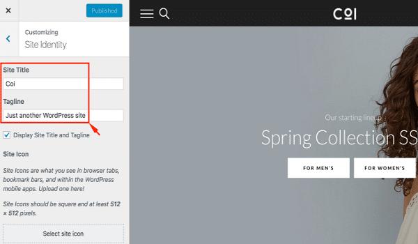 Site Identity dùng để điều chỉnh tên website, tagline và logo,...