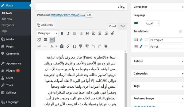 Một ưu điểm của plugin dịch WordPress Polylang là khả năng tối ưu SEO hiệu quả