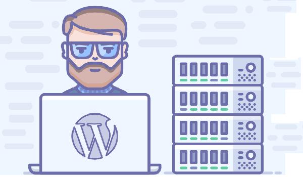 WordPress Hosting là gì? V3 sở hữu nhiều cải tiến so với hosting thông thường