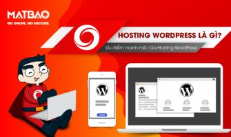 Hosting WordPress là gì? Ưu điểm mạnh mẽ của Hosting WordPress