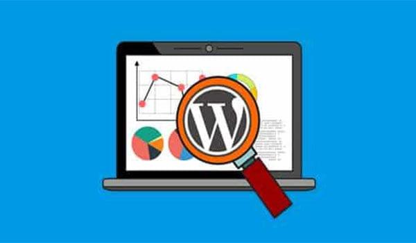 Việc sử dụng Plugin Google Analytics rất cần thiết cho WordPress