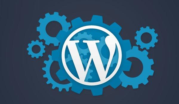 setting wordpress là gì