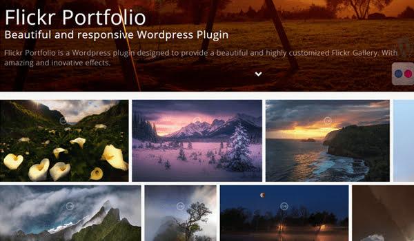 Flickr Portfolio là công cụ tối ưu để hiển thị ảnh Flickr của bạn trên Portfolio