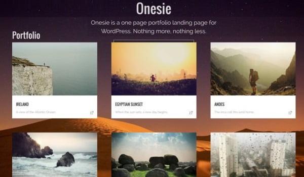theme wordpress onesie